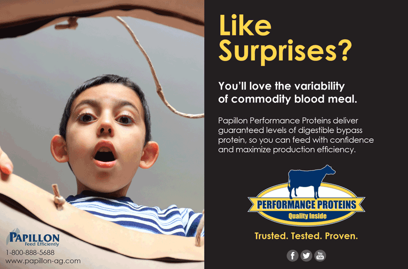 Like Surprises Performance Proteins Ad